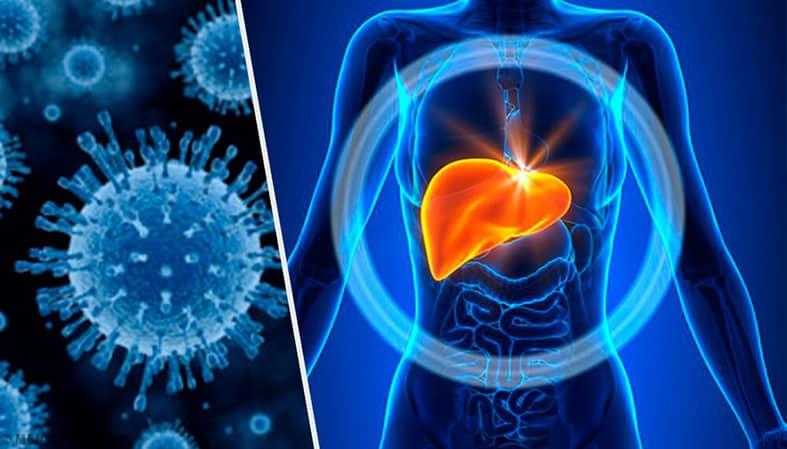Лечение гепатитов в ADONIS, Кмев