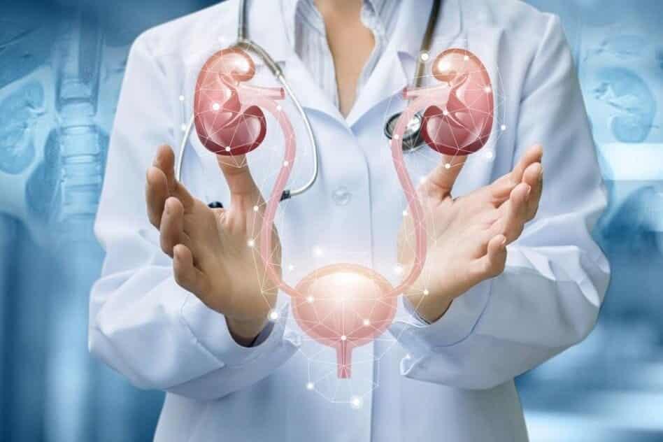 Профилактика и диагностика урологических заболеваний