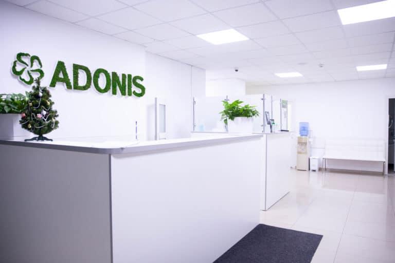 Рецепция Adonis Family