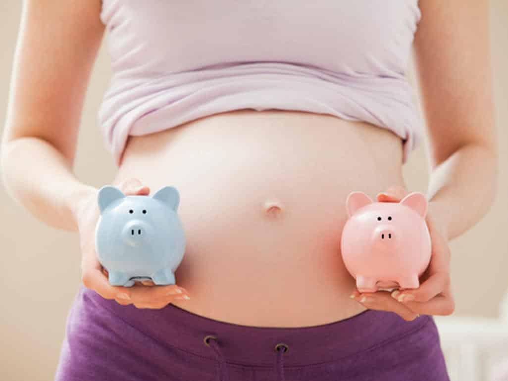 Многоплодная беременность в ADONIS